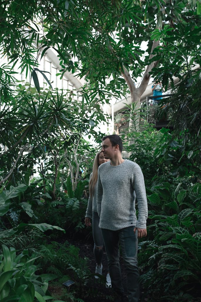 Engagement shoot at Barbican Conservatory 44 684x1024 - Engagement Photo shoot - Barbican | London